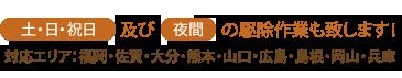 土・日・祝日及び夜間の駆除作業も致します!対応エリア:福岡・佐賀・大分・熊本・山口・広島・岡山・兵庫・香川